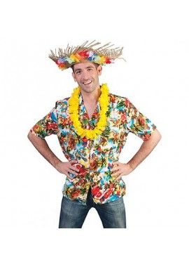Hawaii hemd man